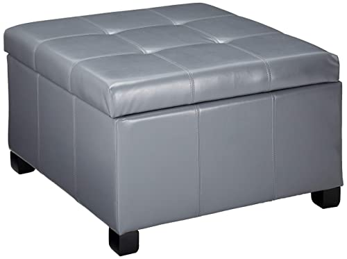 Christopher Knight Home Living Richmond Light Grey Storage Ottoman