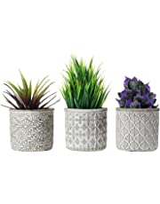 T4U Ceramic Succulent Cactus Planter Plant Pot with Bamboo Tray