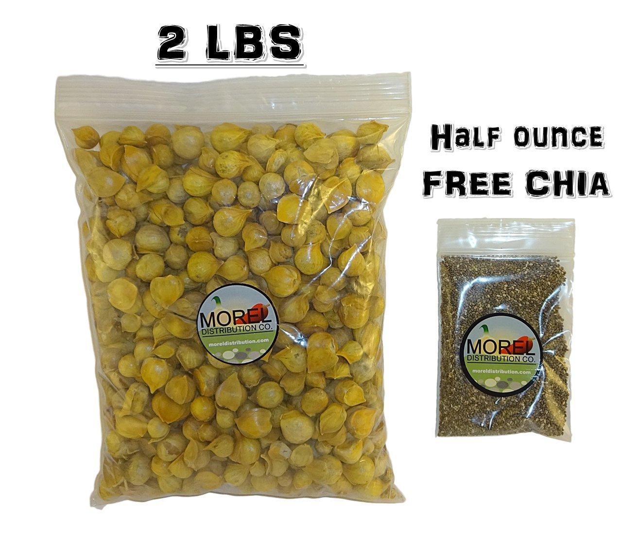 Buy Japanese Garlic (Ajo Japones) 2Lbs! and get FREE 1 oz Chia Bag! by Morel Distribution Company