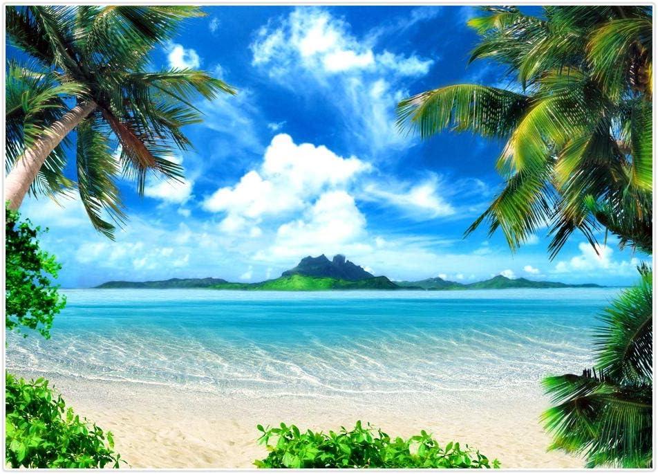 Allenjoy Sommer Ozean Strand Hintergrund Für Fotografie Tropische Kokosnuss Palme Blau Himmel Weiß Wolken Meer Sand