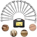 Baban 16PCS punta da trapano/sega a tazza Forstner Drill Bit Set lavorazione del legno foro ha veduto Forstner Set con scatola 15-35mm