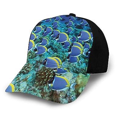 Hip Hop Sun Hat Baseball Cap, School of Powder Blue Tang Fishes In ...