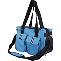 LEMKA Soft Sided Pet Carrier - Luxury Travel Tote,Under Seat Compatibility, Perfect for Cats and Small Dogs,Blue-Green