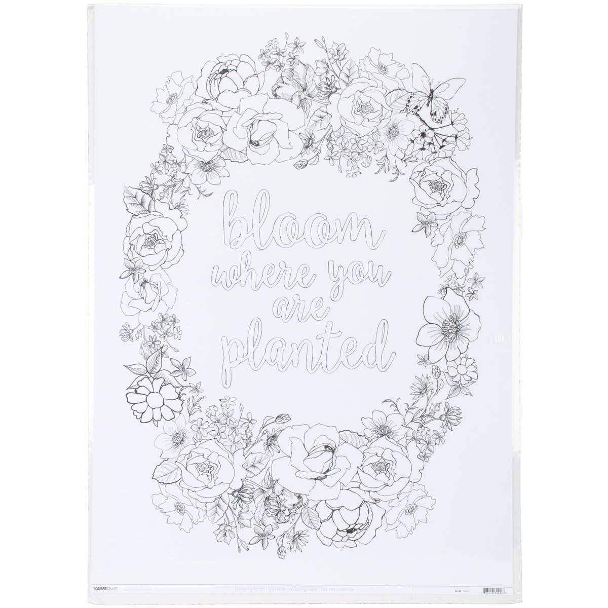 KaiserColour Coloring Poster 27''X19''-Bloom
