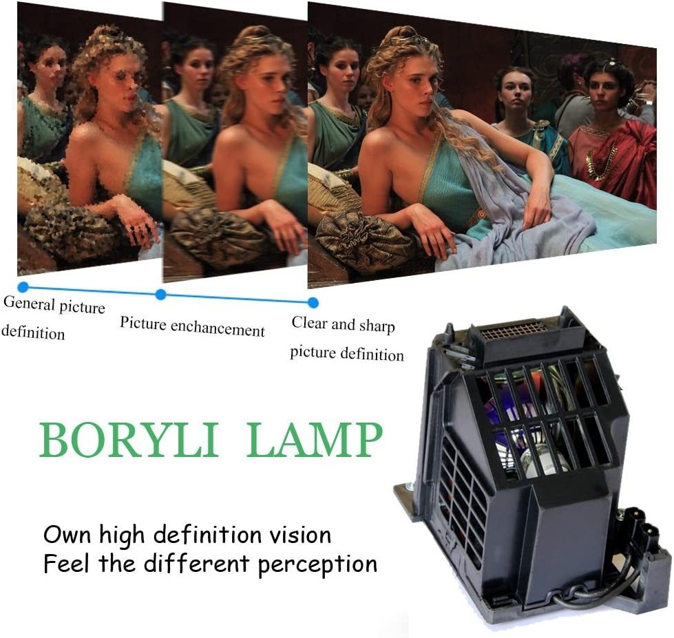 BORYLI 915B403001 Replacement Lamp with Housing for WD-60735,WD-60737 WD-82837 WD-60C8