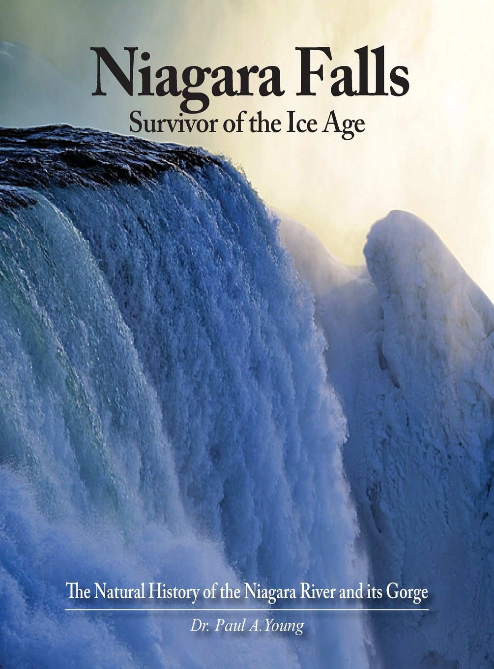 Download Niagara Falls: Survivor of the Ice Age: The Natural History of the Niagara River and its Gorge pdf epub