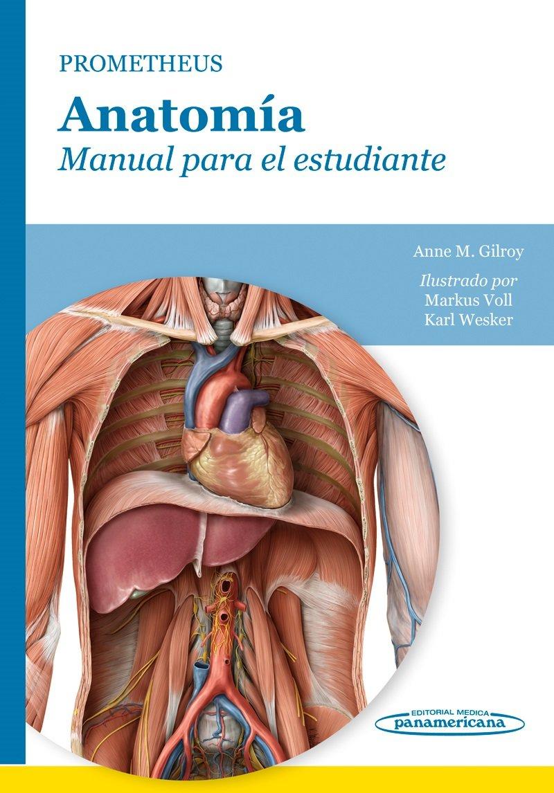 Prometheus. Anatomía. Manual para el estudiante: Amazon.es: Markus ...