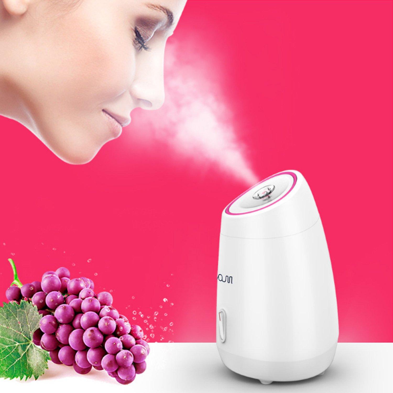 Limpiador facial de vapor de frutas y vegetales Limpiador facial de rociador de belleza