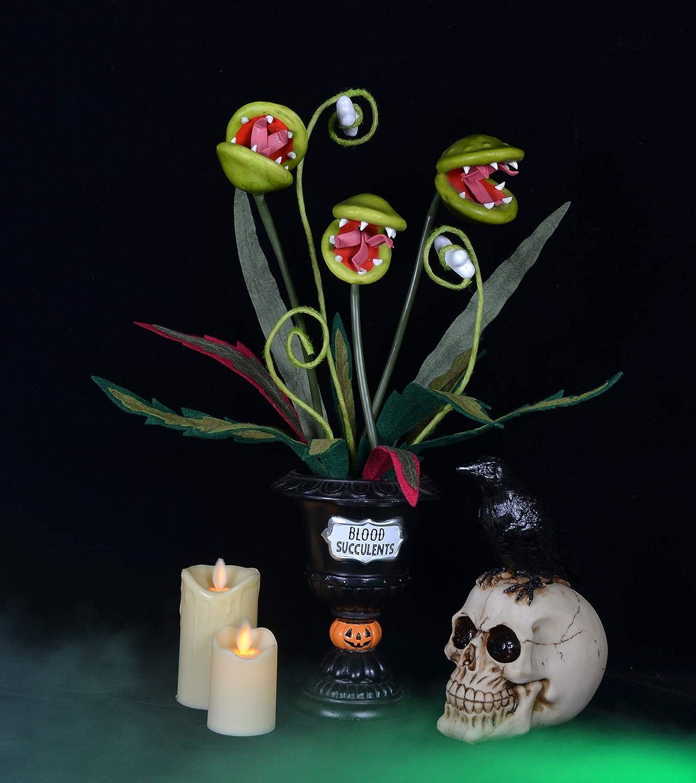 Halloween Succulents 19