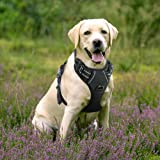 Rabbitgoo Front Range Dog Harness No-Pull Pet Harness Adjustable Outdoor Pet Vest 3M Reflective Oxford Material Vest for Dogs Easy Control for Small Medium Large Dogs (Black, L)