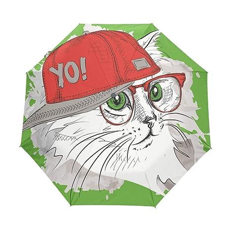 Amazoncom Yokii Creative Cute Hip Hop Cat Illustration 3 Folds