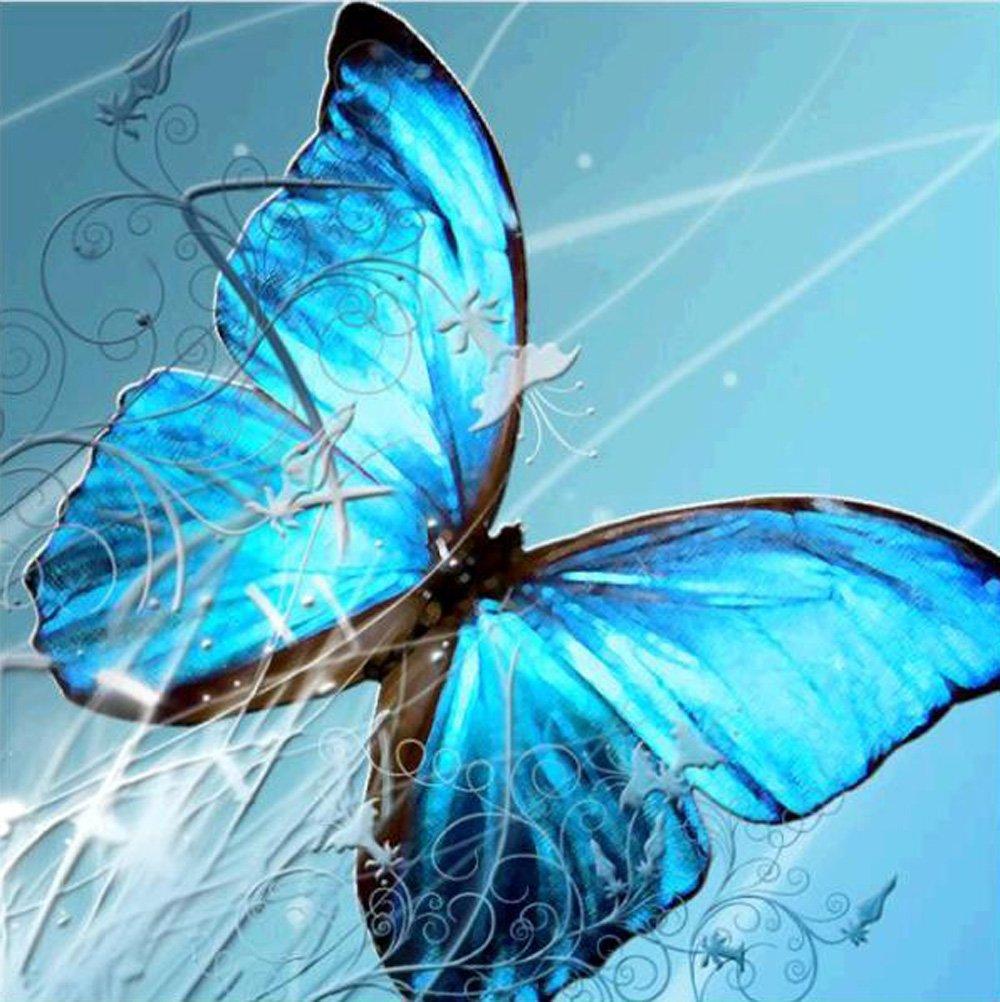 5D Pintura por Diamantes (5220) mariposa