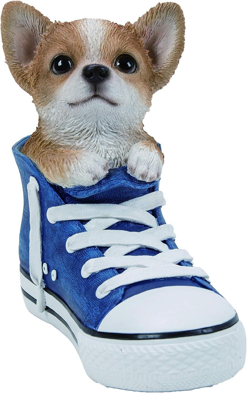 Vivid Arts Pet Pals in Sport Shoes Yorkshire Terrier Home or Garden Decoration