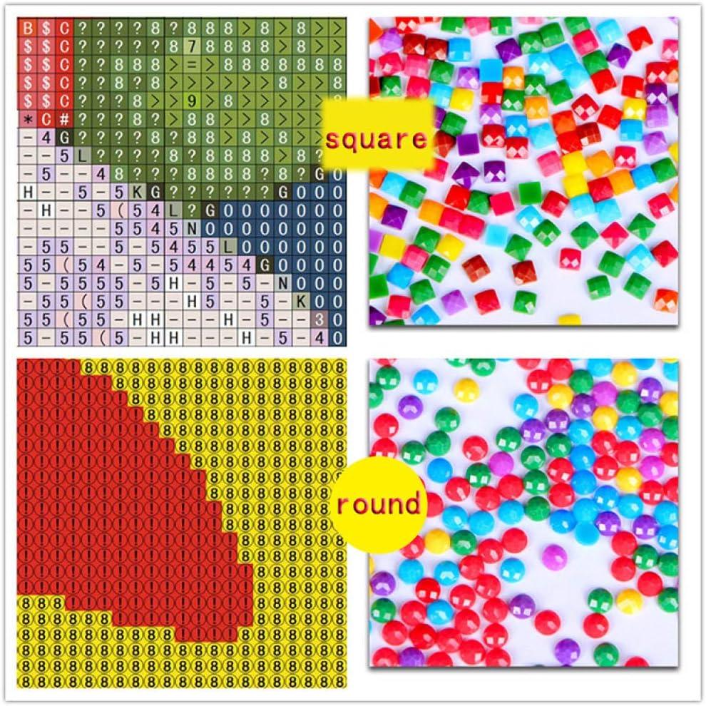 HYTDIAMIANDS DIY 5D Diamant Malerei Kit Strass Stickerei Bilder Kunst Handwerk Diamant Painting Full Kits f/ür Haus Wand Dekor LKW Rahmenlos 40/×30CM