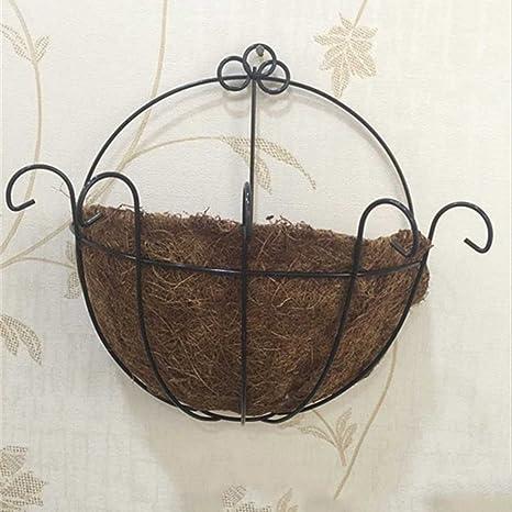 Amazon Com Nacola Metal Wall Hanging Planter Basket With Coco Coir