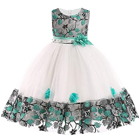 14b80b64d6e2 Amazon.com: Baby Embroidered Formal Princess Dress for Girl Elegant  Birthday Party Dress Girl Dress Baby Girl Christmas 2-14 Years,As  Picture1,2T: Kitchen & ...