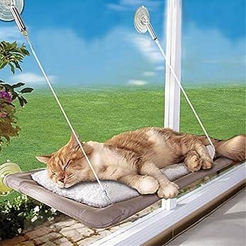 Cama de ventana para gato Yookay, tipo hamaca, 4 ventosas resistentes y capacidad para hasta 35 lb: Amazon.es: Productos para mascotas