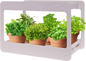 Extra Wide LED Indoor Herb Garden - at Home Stackable Desk Planter Tabletop Growing System w/Automatic Timer, Grow Herbs, Succulents & Vegetables - Mindful Design