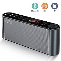 Enceinte Bluetooth Radio FM Numérique Portable Lecteur MP3 sans Fil Haut-Parleur Portable avec Bass Puissant Microphone Intégré, les Pilotes Double Basse Compatible iPhone Android, iPad, Ordinateur (Noir)