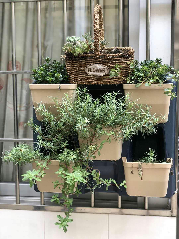 Amazon Flower Pots In Bulk 1 Gallon Plastic Nursery Garden