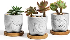 T4U 2.5 Inch Small Grey Ceramic Succulent Planter Pots with Bamboo Tray Set of 3, Marble Glazed Porcelain Handicraft as Gift for Mom Sister Best for Home Office Restaurant Desk Windowsill Decoration