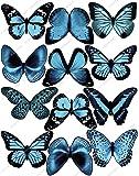 Lot de 12 Papillons Bleu clair Comestibles PRÉ-DÉCOUPÉS par Cakeshop