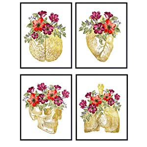 Flower Organs Room Decor for Home or Medical Office - Gift for Women, Nurse, Doctor, Physician Assistant, PA, RN - Boho Floral Anatomy Wall Art Set - Vintage Shabby Chic Gothic Picture Poster Prints