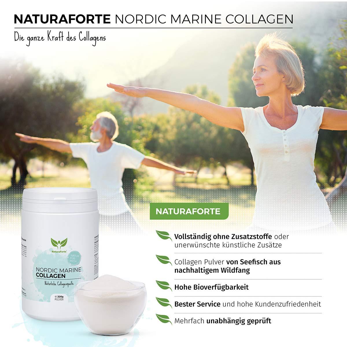 Colágeno Marino Hidrolizado 300g. | Natural, Sin Azúcar, Sin Grasa, Sin Colesterol | Ayuda a Reducir los Signos de Envejecimiento | NaturaForte: Amazon.es: ...