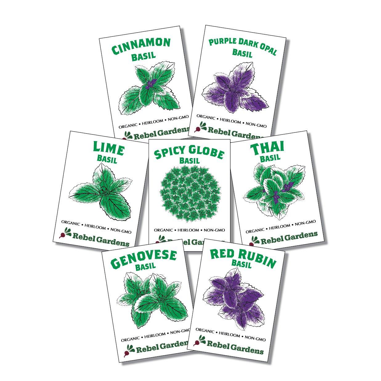 Organic Basil Seeds - Set of 7 Heirloom Non-GMO Seed - Thai, Genovese, Cinnamon, Spicy Globe, Purple Opal, Red Rubin, and Lime