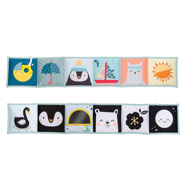 Taf Toys 12385 - Libro de actividades Polo Norte: Amazon.es: Bebé