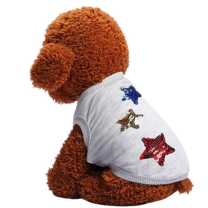 Ropa para Mascotas,Dragon868 Hermoso otoño Cinco StarsVest Camisas para Perros de Mascota: Amazon.es: Ropa y accesorios