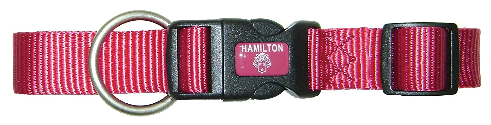 Hamilton Adjustable Dog Collar with Brushed Hardware B FAL 18/26 RS - 2