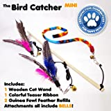 Mini Cat Feather Wand Toy Set with 2 Guinea Fowl Feather Refills 1 Ribbon and Wooden Rod
