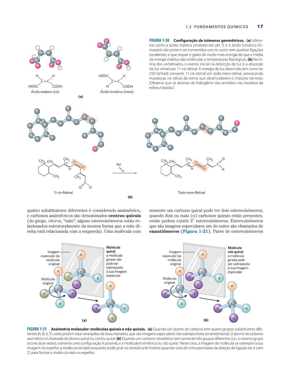 Princípios de Bioquímica de Lehninger: Amazon.es: David L ...