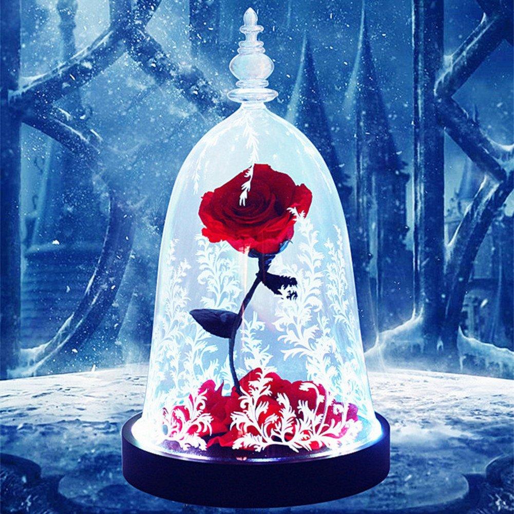 Eternal rose,Blumen Die schönheit und das biest Glas-ornamente Light Weihnachten Geburtstag Dekoration Senden sie an ihre freundin-A 16x28cm(6x11inch)