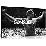 Panther Print, Large Canvas Wall Art, Beautiful Living Room Framed Art, Quality Picture Prints for Walls, Motivational Design