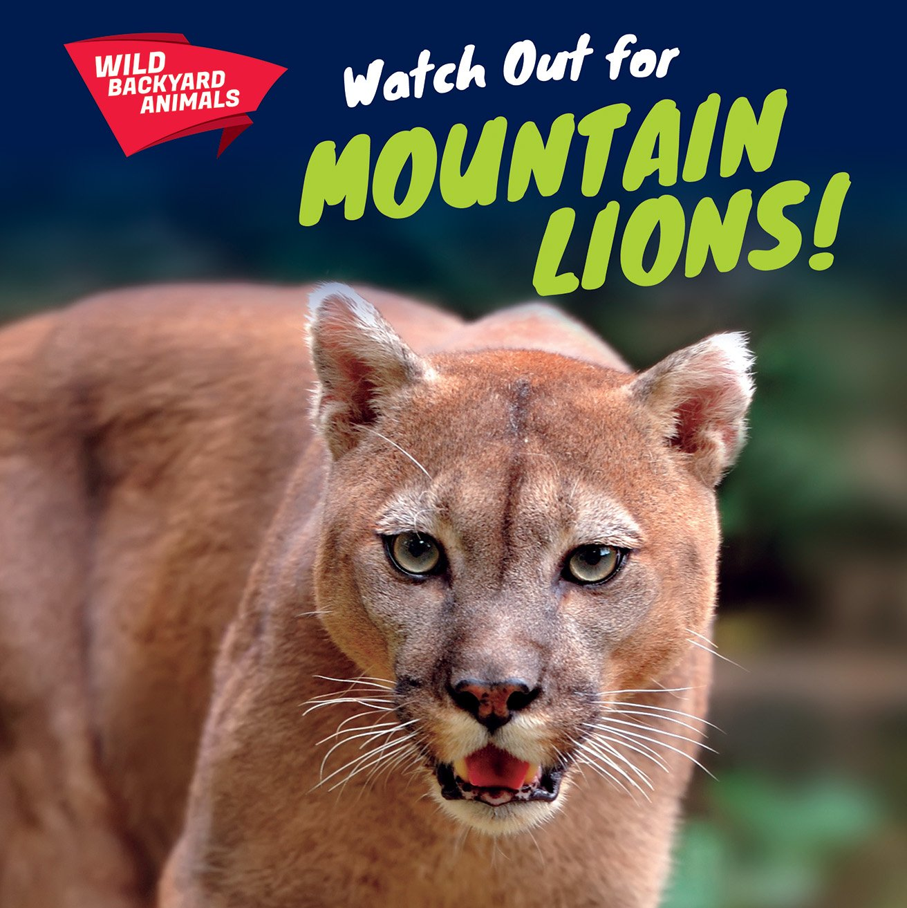 Watch Out for Mountain Lions! (Wild Backyard Animals)