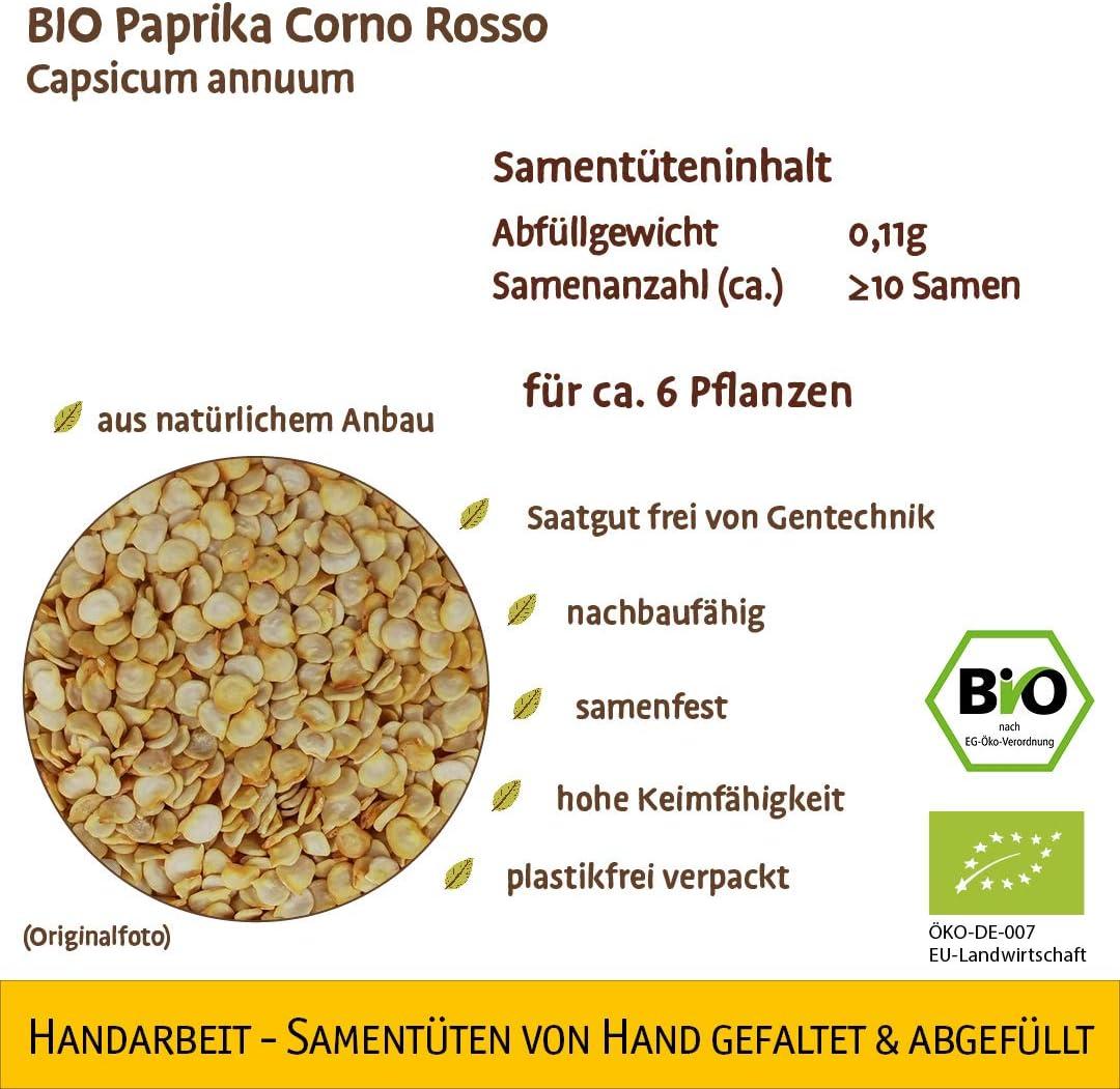 Sorte:BIO K/ürbis Rouge vif d/´Etampes Samenliebe Hochwertige BIO Gem/üse-Samen samenfeste Sorten Saatgut BIO DE-/ÖKO-007 Geschenk Mix Set