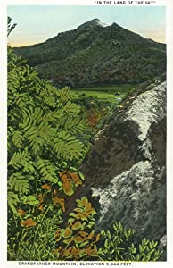 Blue Ridge Mountains, North Carolina - Grandfather Mountain Scene (16x24 Giclee Gallery Print, Wall Decor Travel Poster)