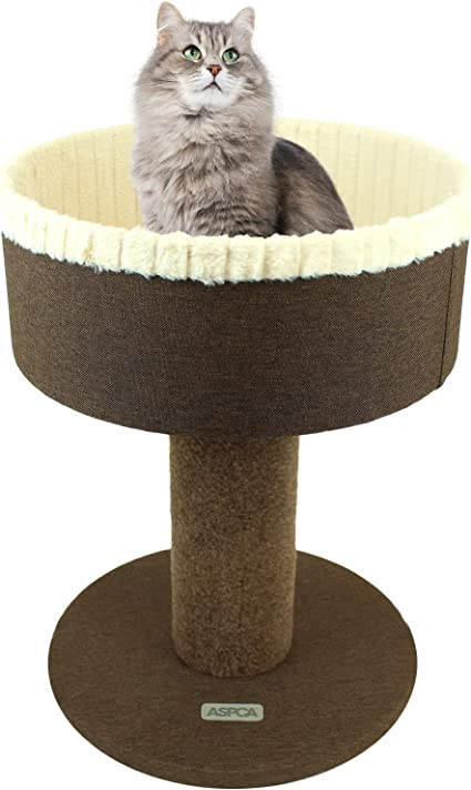 Sale Online Super Cute Great Prices Cat Ring Holder Bed