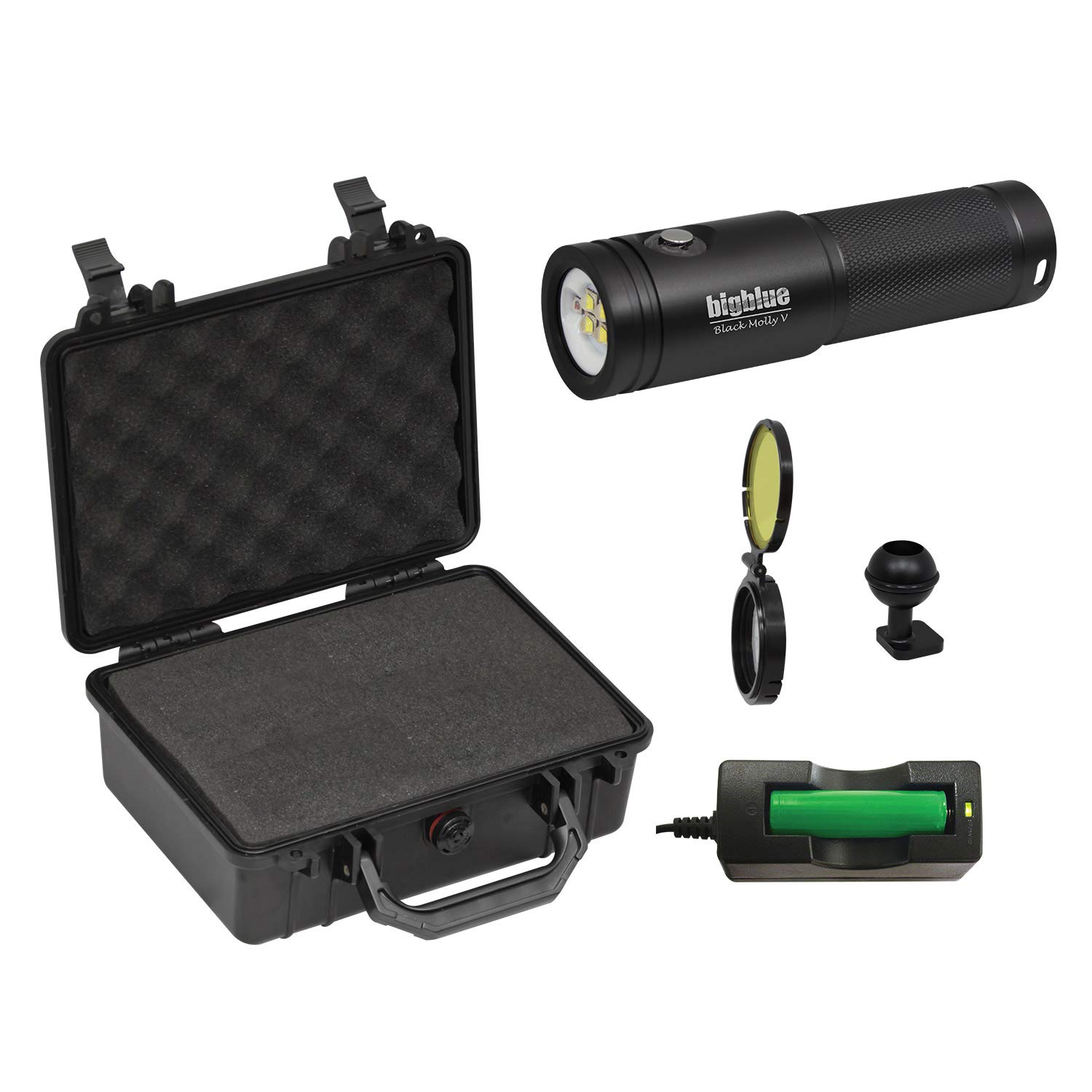 BigBlue AL2600XWP-II - 2600 Lumen Extra-Wide Beam LED Dive Light (Black with Protective Case)