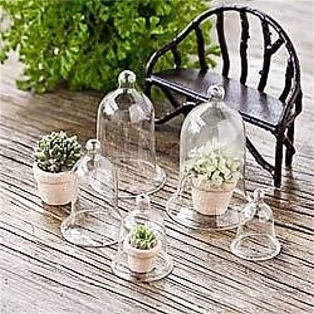 Miniature Dollhouse Fairy Garden - Glass Cloches Set of 5 - Accessories