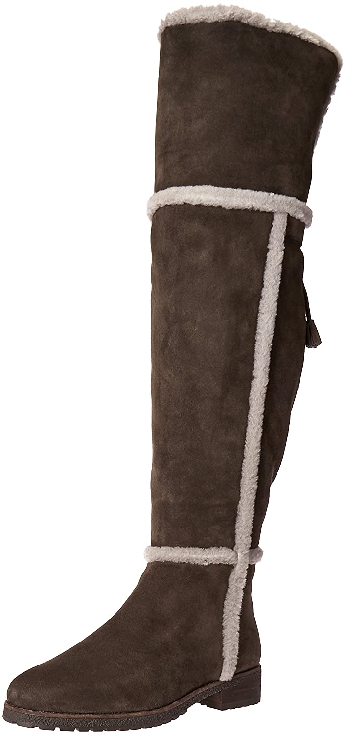 FRYE Women's Tamara Shearling OTK Winter Boot B01BNUWUL2 11 B(M) US|Smoke