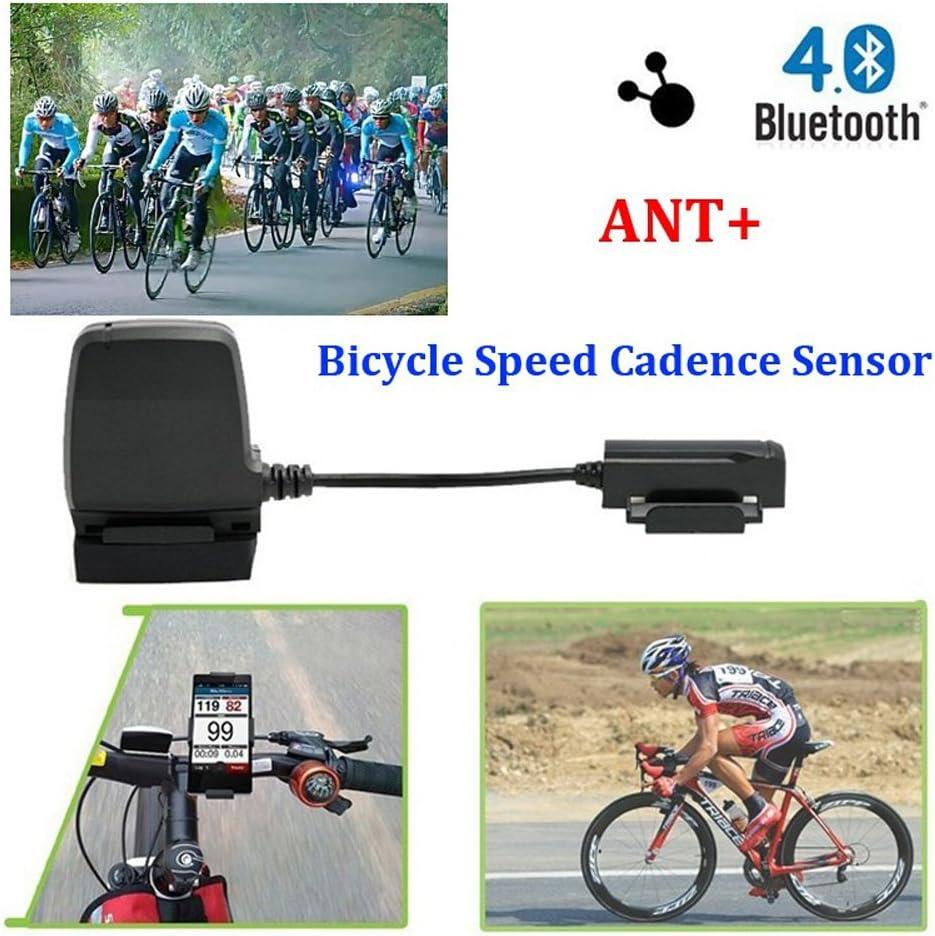 Ordenador de bicicleta, sensor velocímetro y de cadencia ...