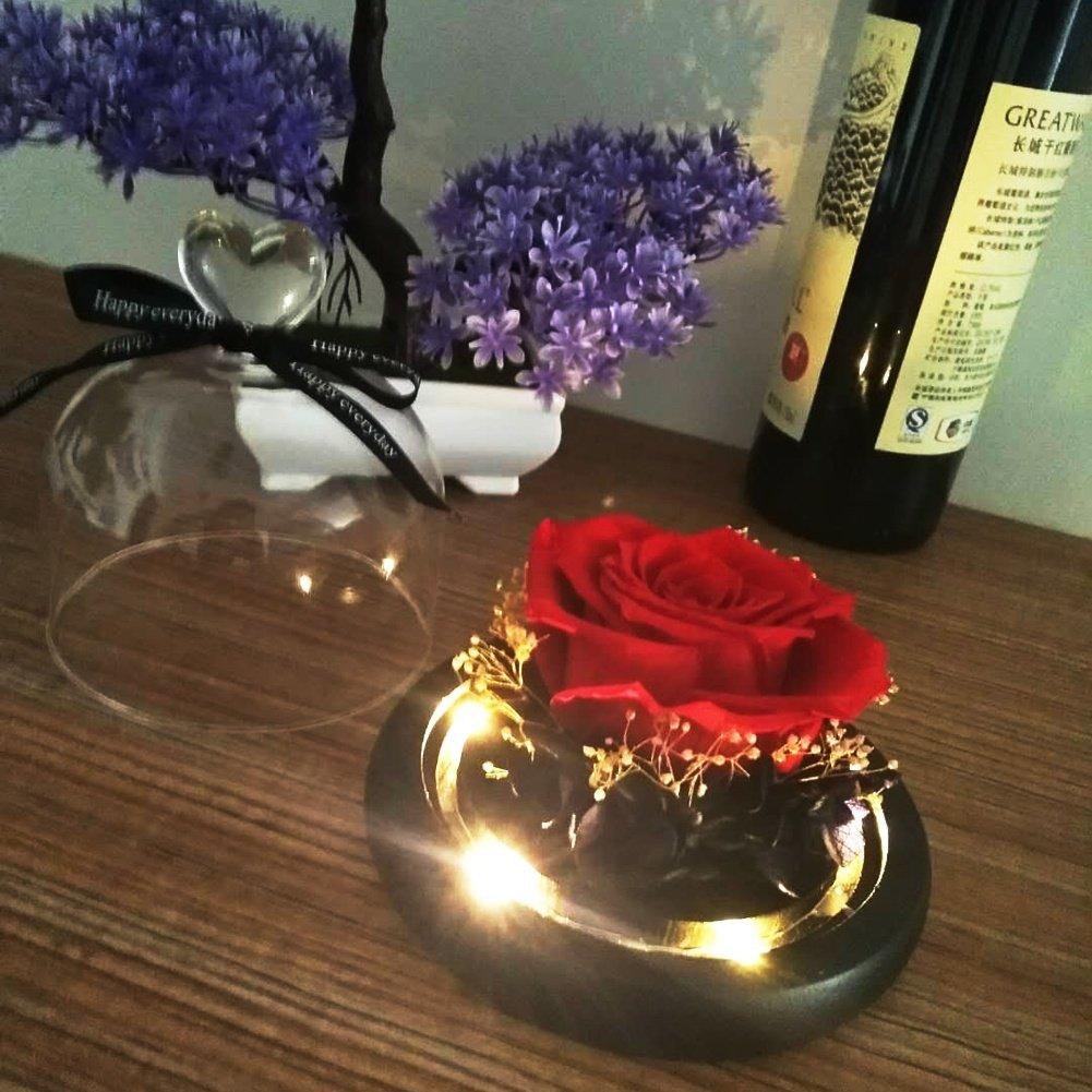 Naturelle éTernelle Rose Rose Rouge Magique 13*12.5CM PéTales De Rose,Lumières LED Et Cloche En Verre Sur Un Socle En Bois, Reddamai-shop