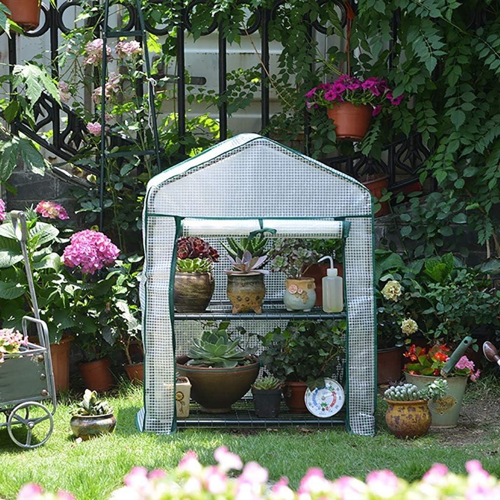 ZCCWS 2 Capas de Invernadero de plástico pequeño, suculento, Verde en Maceta, Invernadero, cobertizo, Invernadero, Invernadero (Color : C)