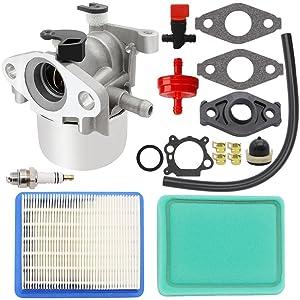 HOOAI Carburetor for Briggs Stratton 799866 790845 799871 796707 794304 Toro Craftsman Carb