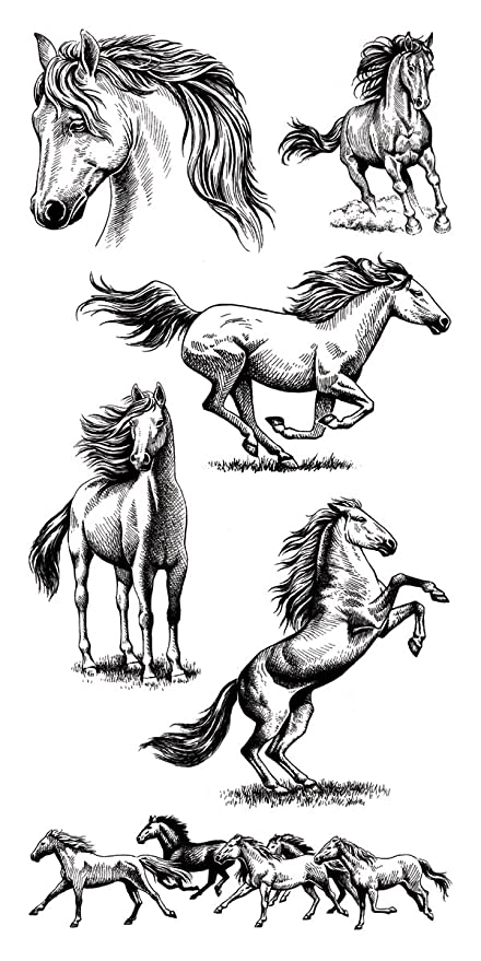 Inkadinkado Horse Clear Stamp Set for Arts and Crafts, 6pc