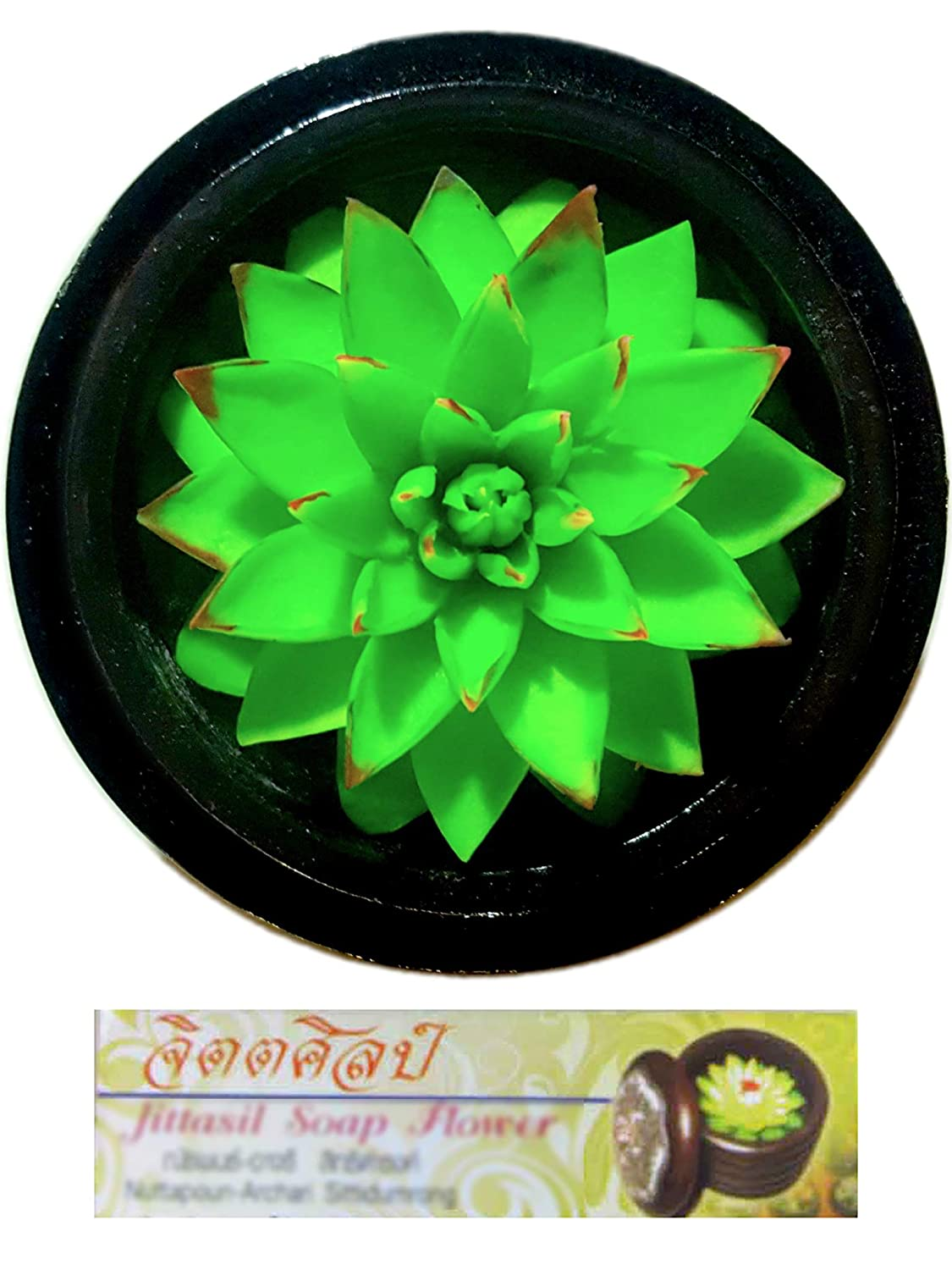 Jittasil Thai Hand-Carved Soap Cactus, 4 Inch Scented Soap Carving, Succulent (Agave) JITCact002