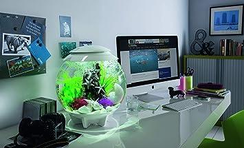 biorb Decoración Acuario Halo 30 con LED - 30 Litros, gris: Amazon ...
